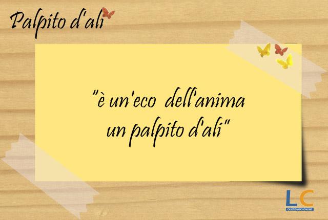 palpito_d_ali_001
