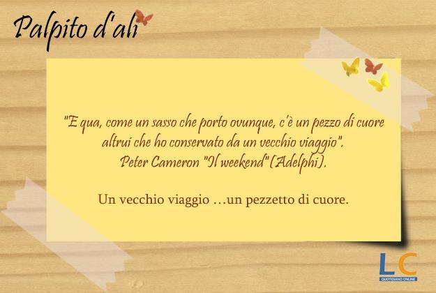 palpito_d_ali_0012