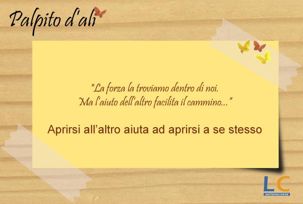 palpito_d_ali_0015