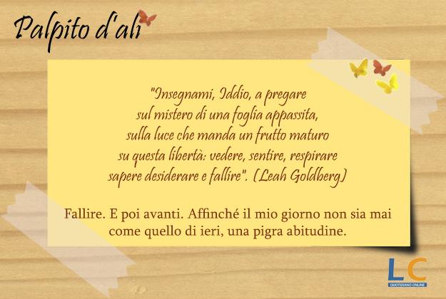 palpito_d_ali_0018