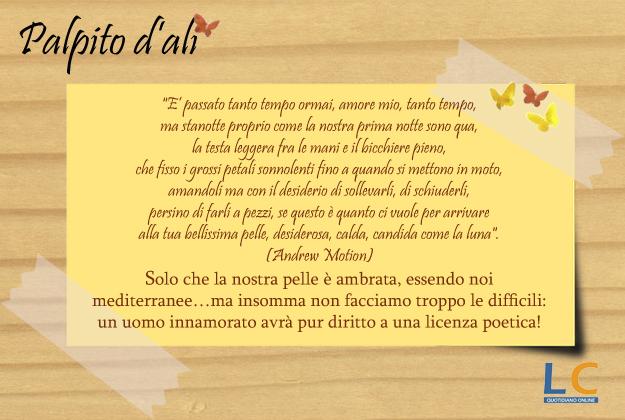 palpito_d_ali_0019
