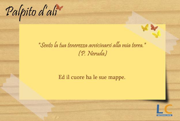 palpito_d_ali_0031