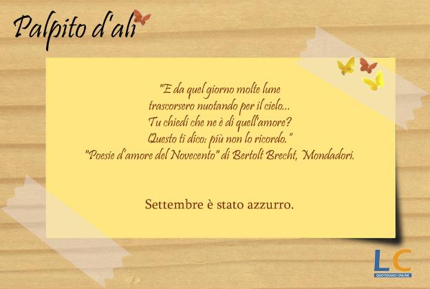 palpito_d_ali_43x
