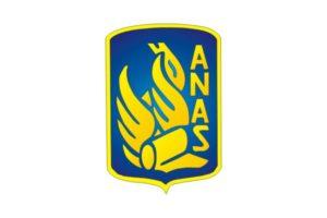 logo_anas
