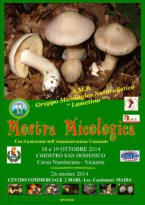 motra_micologica_2014