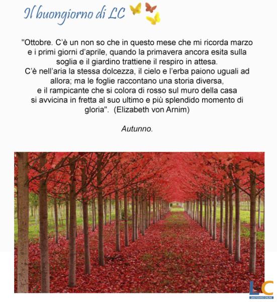 page_buongiorno_da_lc_00x