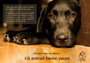 animali_paura