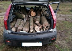 macchina_legna