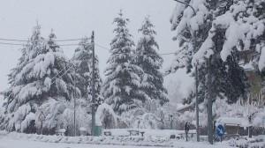 neve-camigliatello-silano-1