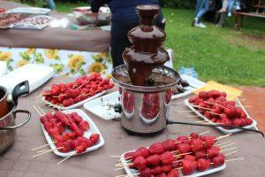 festa_cioccolata_falerna