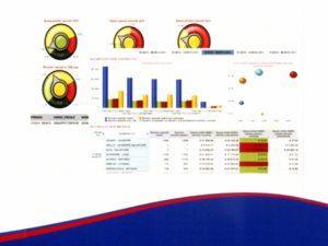 sistema_reporting_integrato