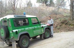 Abusivismo:Parco Sila, sequestrate opere realizzate senza autorizzazione