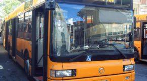 Trasporto pubblico locale: servizio di pubblica utilità o servizio utile alla pubblica amministrazione?
